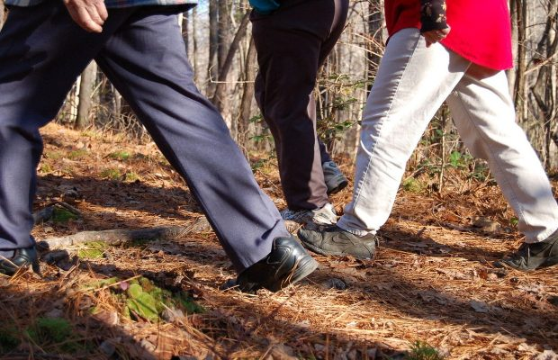 How many calories can you burn while walking? | WTAX 93 ...
