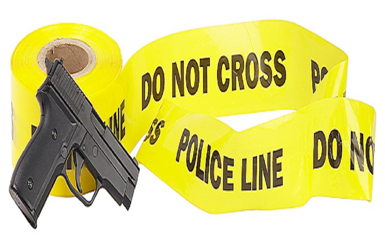 Four Dead in Elmhurst