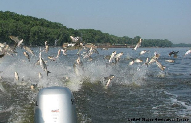 Redneck Fishing Tourney