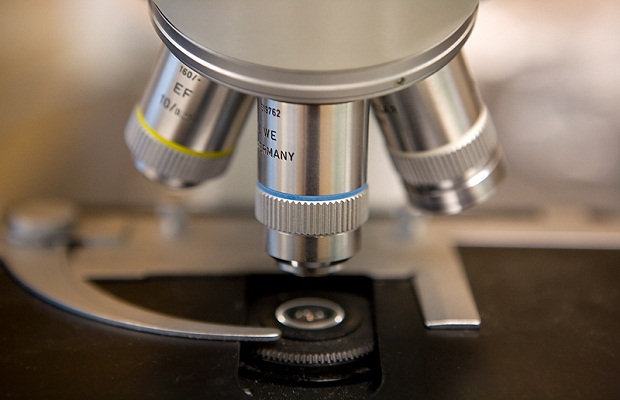 U of I Research: Stem Cells Could Repair Exercised Muscles