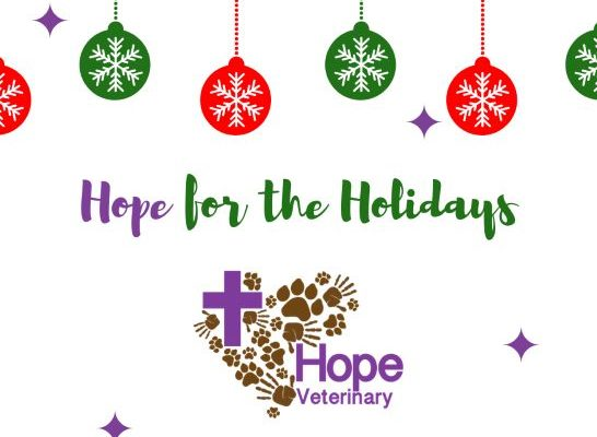hope for the holiday - Hope For Christmas